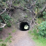 Tunnel at Campsite