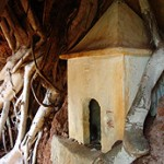 The most well preserved shrine, housed under the roots of a tree